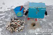 Прикормка для зимней рыбалки на окуня своими руками
