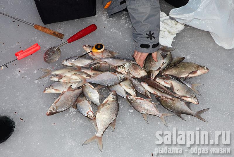 Рыбалка образ жизни салапин видео