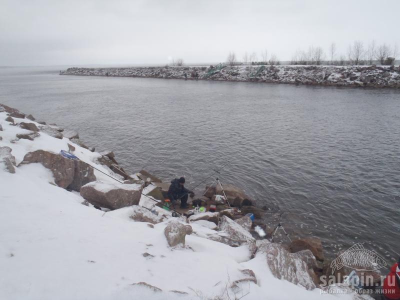 канал сосновый бор рыбалка