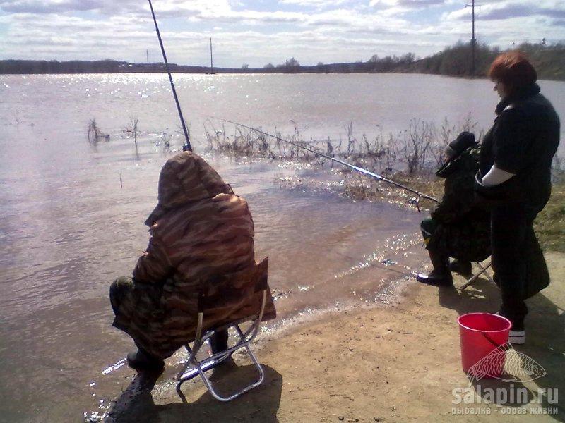 пруд. платная рыбалка таруса