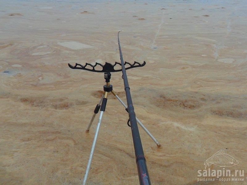 направление ветра рыбалка