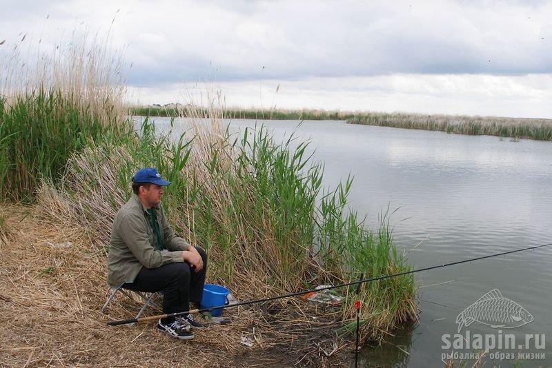 хорошая рыбалка в алтайском
