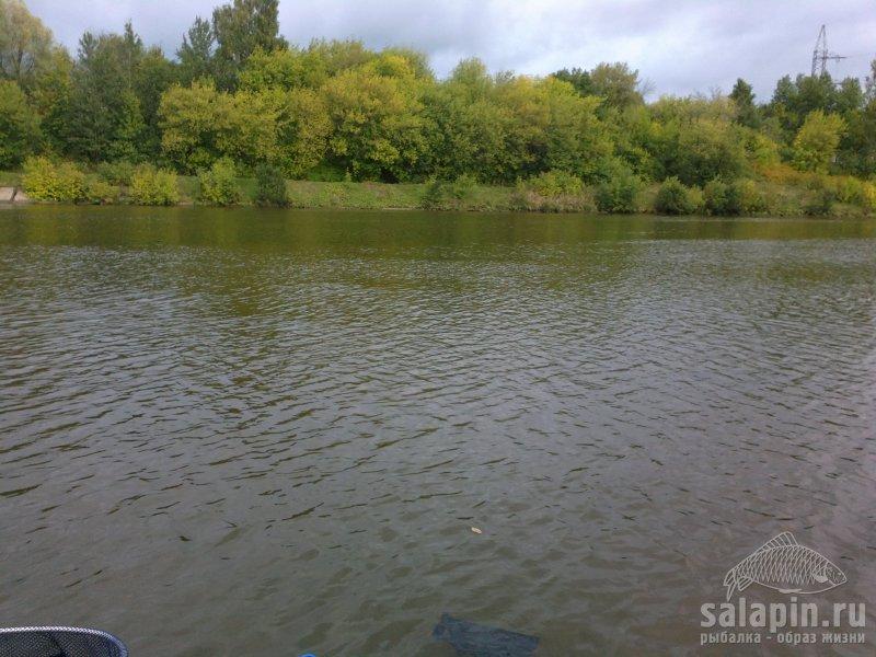 канал морозки рыбалка