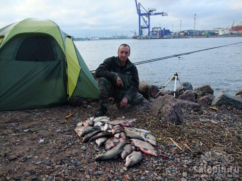 остров рыбалка официальный сайт
