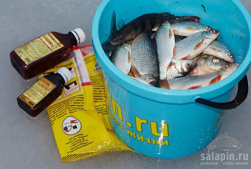 рыбалка люкс