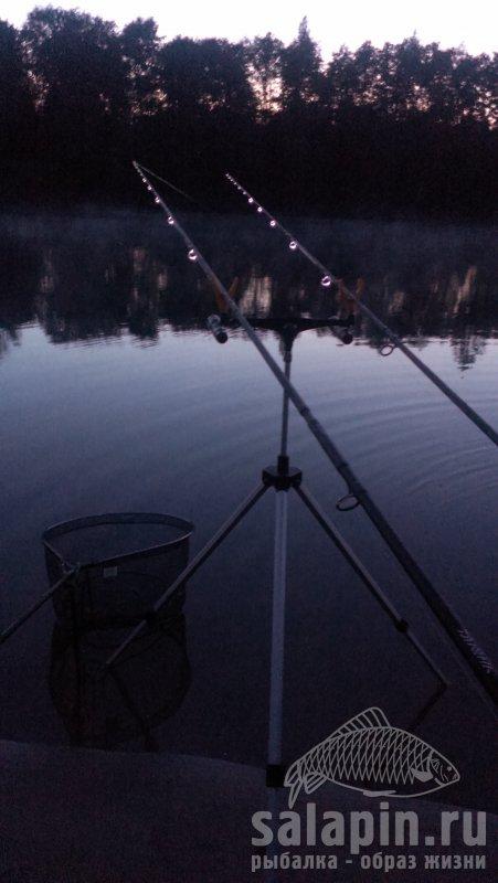 Ловля фидером ночью видео