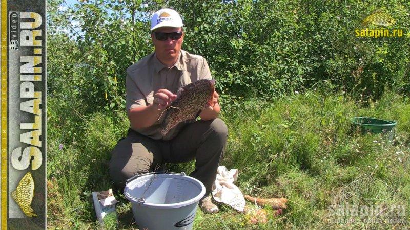как ловить в такую жару рыбу