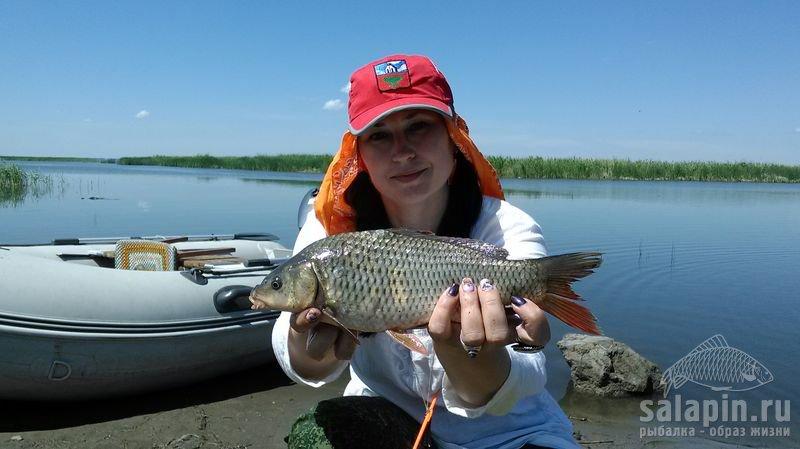 сезон ловли рыбы на волге