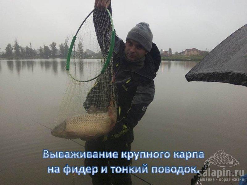 как ловить рыбу в карпа получи и распишись фидер
