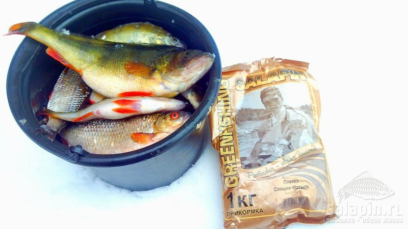 прикормка улов