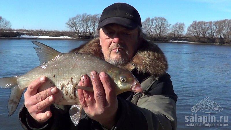 Рыбалка в волгоградской области в марте 2016