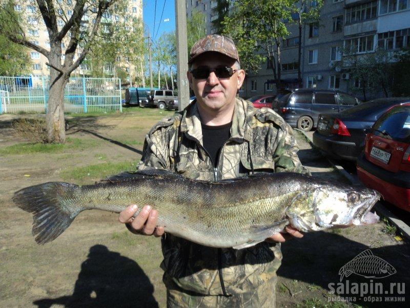 отчеты о рыбалке канал шатура