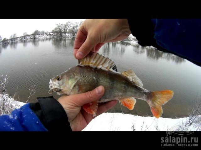 спиннинговая ловля на москва реке