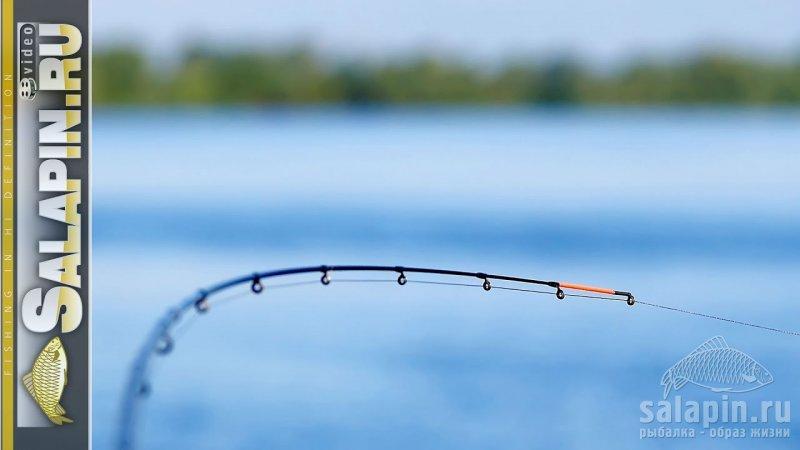 про рыбалку фидером