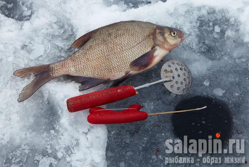 рыбалка от салапина