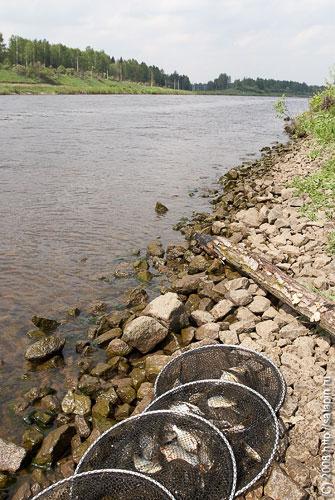 рыбалка на канале имени москвы темпы